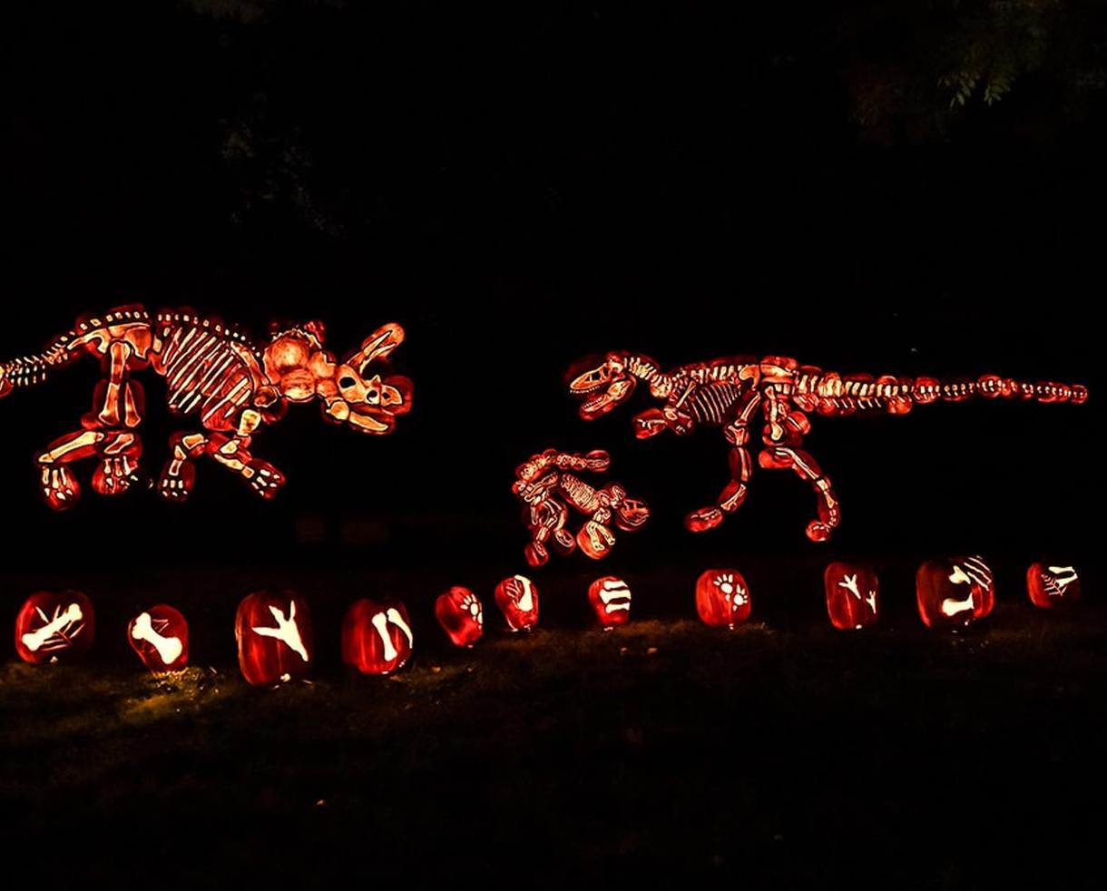 The GLOW: A Pumpkin Wonderland in Reston, Virginia