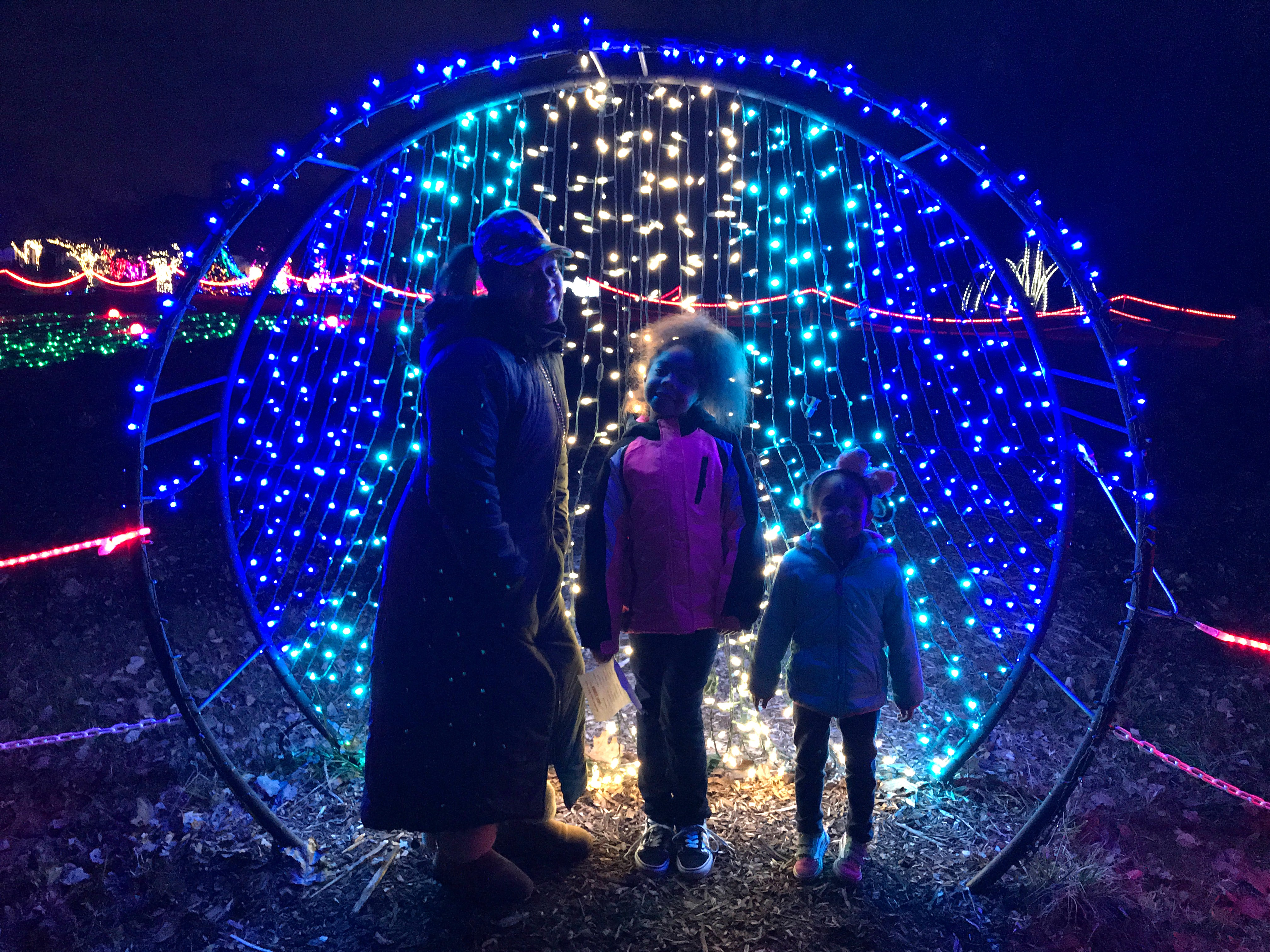 Meadowlark's Winter Walk of Lights Vienna, Virginia
