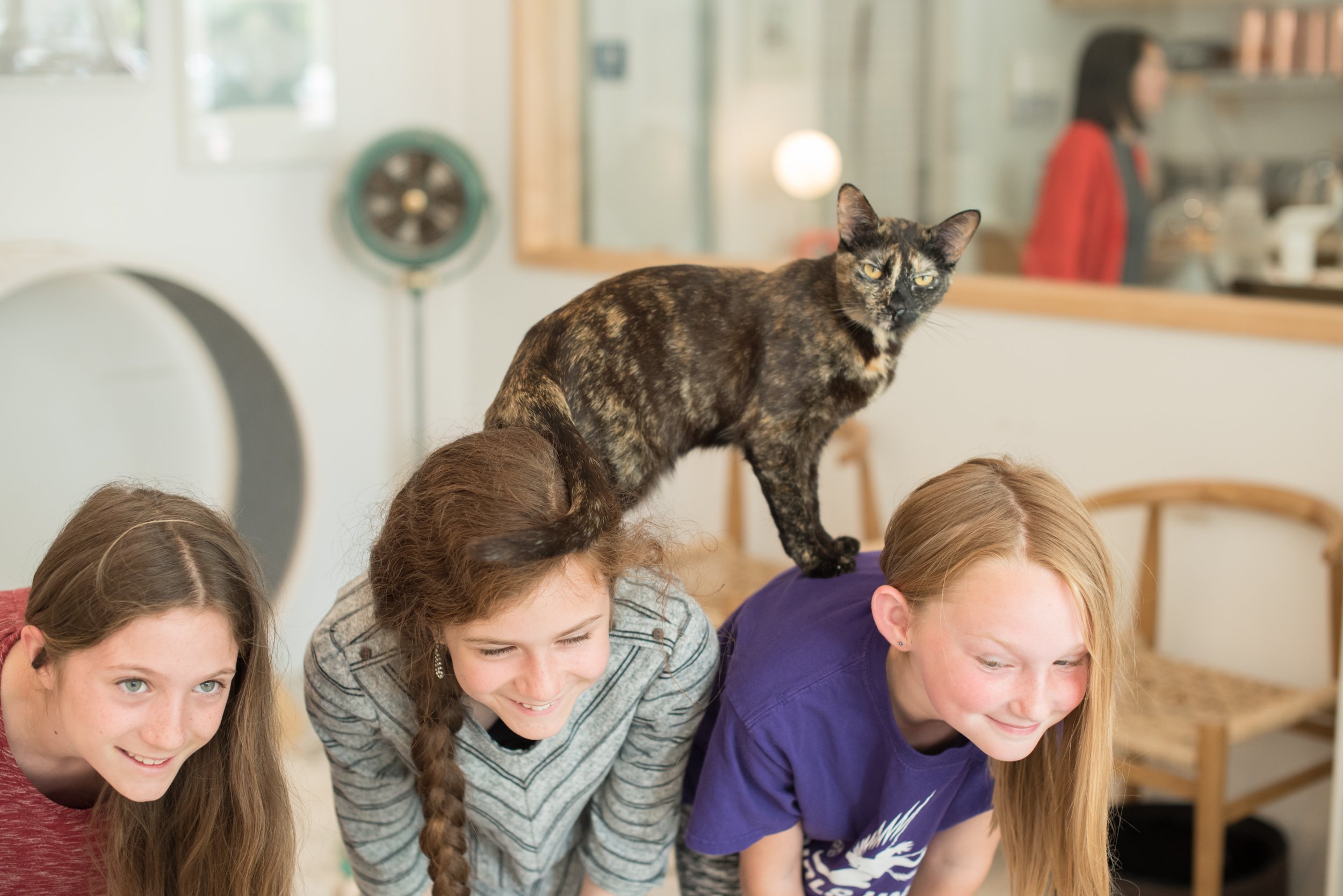 three kids with a cat on their backs at the KitTea Cat Cafe in San Francisco