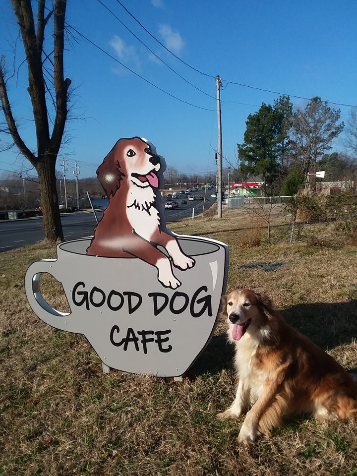 Good Dog Cafe in Fayetteville AK